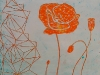 Orange Poppy with Lines
